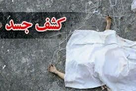 متهم به قتل دو جوان دهدشتی دستگیر شد+جزئیات