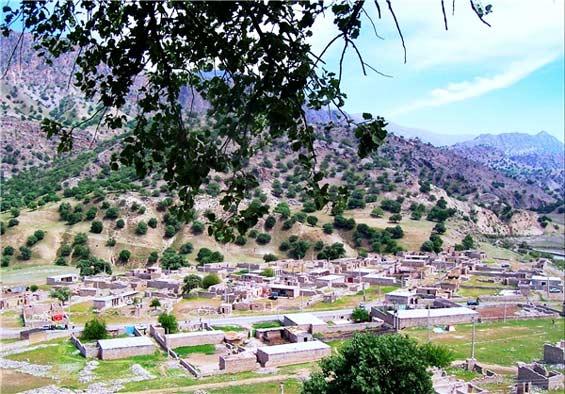 روستای شادگان ۱۵ روز است آب ندارد/تعلل یا بوروکراسی اداری قابل توجیه نیست/مردم تحت فشار هستند!