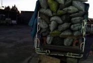 جریمه ۳ میلیاردی قاچاقچی ذغال در کهگیلویه و بویراحمد